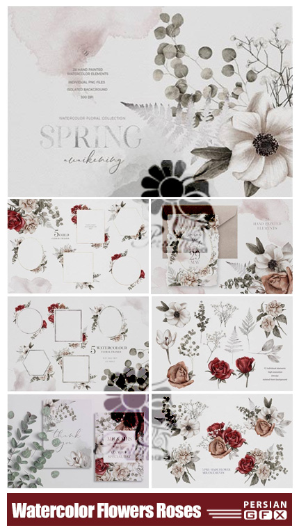 دانلود کلیپ آرت عناصر طراحی آبرنگی گل و بوته - Watercolor Flowers Leaves Bouquet Roses