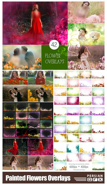 دانلود 42 تصویر پوششی نقاشی گل های رنگی متنوع - Painted Flowers Photo Overlays