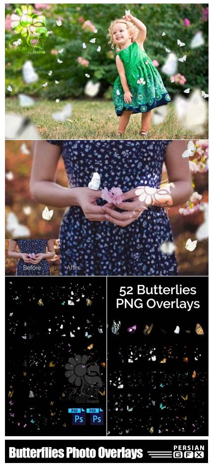 دانلود 52 تصویر پوششی پروانه های متنوع به همراه اکشن فتوشاپ و فایل لایه باز - Butterflies Photo Overlays